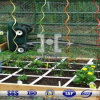 Tomate espirales de PVC