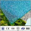 Het Blauwe Polycarbonaat In reliëf gemaakte Blad van het meer