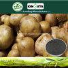 Kingeta contiene efficace il fertilizzante composto basato NPK 28-6-6 del fertilizzante del carbonio carbonio