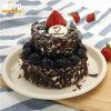 '' bandeja de la pulpa de la placa de la torta 6 con la pulpa antiniebla 100% del bagazo de la caña de azúcar de la tapa