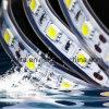 Bianco eccellente 60LEDs/M di luminosità una striscia dei 5050 LED