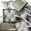 5050 Módulo LED CC12V resistente al agua de la luz de la publicidad