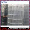 Китай поставляет загородку пикетчика временно ковки чугуна провода металла белую