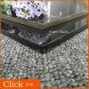 完全なボディ極度の黒い磨かれたタイルの磨かれた床タイル