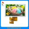 5,0-дюймовый 480 (RGB) x 272 p ЖК-панель с сенсорным экраном