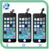 iPhone 5s/6 Plus/6s Plus/7のための携帯電話LCDスクリーン