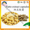 Extrait de natto, capsule de nattokinase, poudre d'extrait de Natto