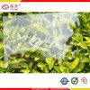 Lexan Polycarbonate Sheet 또는 Polycarbonate Solid Sheet Price
