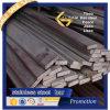De Vlakke Staaf van uitstekende kwaliteit van het Roestvrij staal (304 304L 316 316L 201)