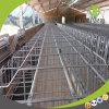 고품질 Hot-DIP 직류 전기를 통한 임신 기간 축사를 사용하는 현대 디자인 돼지 농장