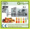 Suco de frutas e produtos hortícolas planta de processamento
