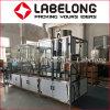 600 bph Автоматическая 5L ПЭТ-бутылки чистой воды заполнения машины на заводе