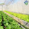Фабрика Китая ткани Spunbond Nonwoven для земледелия