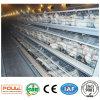 새로운 자동 프레임 층 닭 감금소 & 우리 장비 시스템