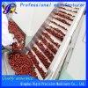 Heißluft-Nahrungsmitteltrockner-Geräten-Gemüsefrucht-trocknende Maschine (Edelstahl)