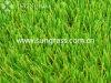 庭または景色(SUNQ-HY00126)のための40mmの合成物質の泥炭