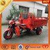 3대의 바퀴 기관자전차 중국제