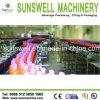 Machine van de Thee van de Fles van het Huisdier van Zhangjiagang de Automatische Groene/Hete het Vullen Installatie