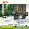 Rattan che pranza insieme/insieme pranzante esterno (DH-6070)