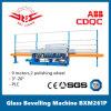 Стекло машины Beveling 9 двигателя с системой автоматического управления для шлифовки наружных зеркал заднего вида (BXM261P)