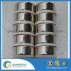 Ímã de anéis permanente do uso do altofalante certificado por Ts16949 e por RoHS
