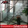 Высококачественный современный дизайн лестница (DD004)