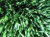 Erba artificiale di calcio del monofilamento con il filato di W-Figura