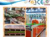Co-extrusie Twee van WPC Lagen Machine van de Raad Decking van de Houten Plastic