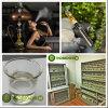 Concentré aromatique de Vape du concentré E de pêche de vente en gros liquide élevée de saveur