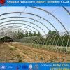 농업을%s Hydroponic 시스템 중국 공장 가격 필름 헛간 온실