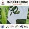Feuille de Sun personnalisée par feuille solide en plastique élevée de polycarbonate de Qualtity