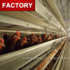 Уганда птицы фермы автоматическая цыпленок слоя каркаса