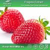 Выдержка плодоовощ клубники высокого качества (коэффициент: 4:1 ~20: 1)