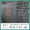 중국 공장 Rolltop 담 또는 수영풀 담 또는 Brc 담 또는 정원 담