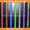 편평한 4 및 Round 2 Series Red LED Rope Light/LED Rope/LED Ribbon/LED Tape