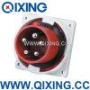 Qixingのヨーロッパ規格の男性のパネルによって取付けられるプラグ(QX3658)