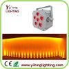 Het mini LEIDENE PARI kan 6in1 Licht van de Disco van de Batterij van Rgabwuv het Draadloze