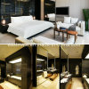Mobilia stabilita della più nuova base di legno moderna di disegno