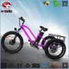 판매를 위한 500W 3 바퀴 스쿠터 뚱뚱한 타이어 전기 세발자전거
