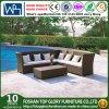 Rattan esterno moderno/insiemi di vimini del sofà, mobilia del sofà del rattan, sofà del rattan (TG-JW60)
