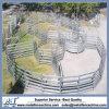 Cancello galvanizzato del comitato della capra & delle pecore della strumentazione dell'azienda agricola, rete fissa del comitato delle pecore