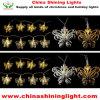 白く暖かい白LEDの球根の蝶ストリングライト