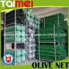 Frutas/Rede de coleta de azeite para a coleta de Colheita