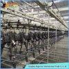 Volledige Automatische Elektroforetische het Schilderen van de Nevel Lijn voor de Producten van het Metaal
