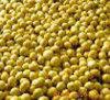 Fosfatidilserina 20-80% dell'estratto della soia di CAS 8002-43-5 Nootropic