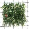 Recinto artificiale 2015 del giardino della barriera dell'erba delle piante della Cina