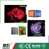 Напольная водоустойчивая стена Rental шкафа индикации СИД P8 Diecasting ультра тонкая видео-