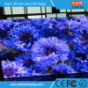 SMD efectiva máxima P6mm Color Eventos Alquiler de Panel de pantalla LED de interior