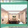 Novel TIC Mood Polymeric Ceiling - novel Holiday