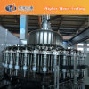 Glas abgefüllter Saft-füllender Produktionszweig